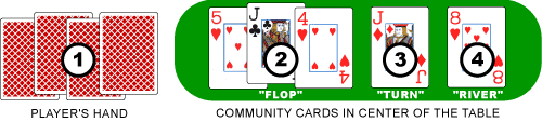 Omaha Holdem Player Hand and Community Cards Distribution